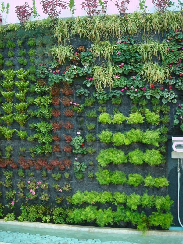 Beautiful Design Jardins Photos - Ridgewayng.com - ridgewayng.com